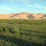 Vidurio Azijos stepėse