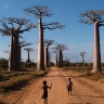 Savana Madagaskare