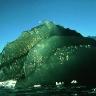 greeniceberg