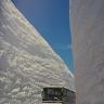 japonijos-sniegas-b