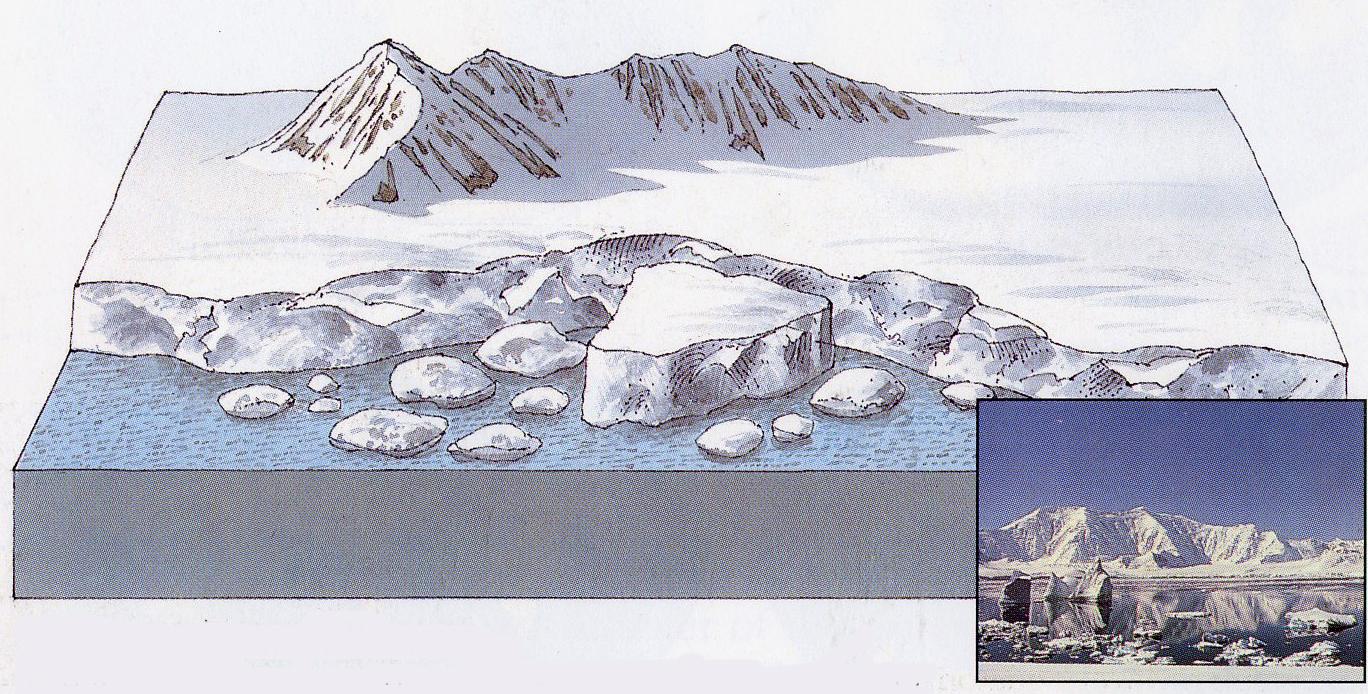 Arktinės dykumos