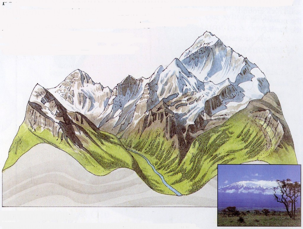 Vertikalaus zoniskumo (kalnu) sritys