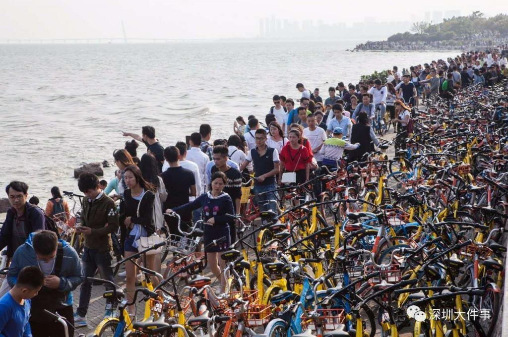 bike-path-shenzhen-bay-shared-bikes