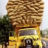 Žemės riešutų derlius Senegale vežamas į uostą