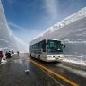 japonijos-sniegas-a