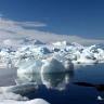 Arkties ledas