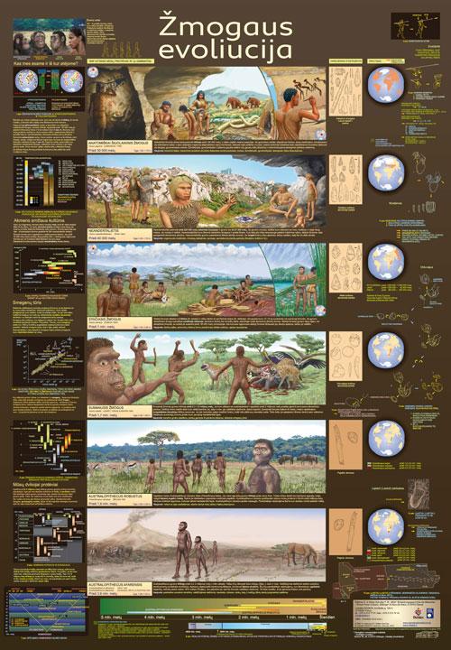 Zmogaus-evoliucija_2011