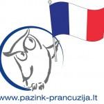 pazink_pranc1