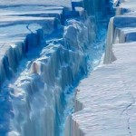 Ledo plysys